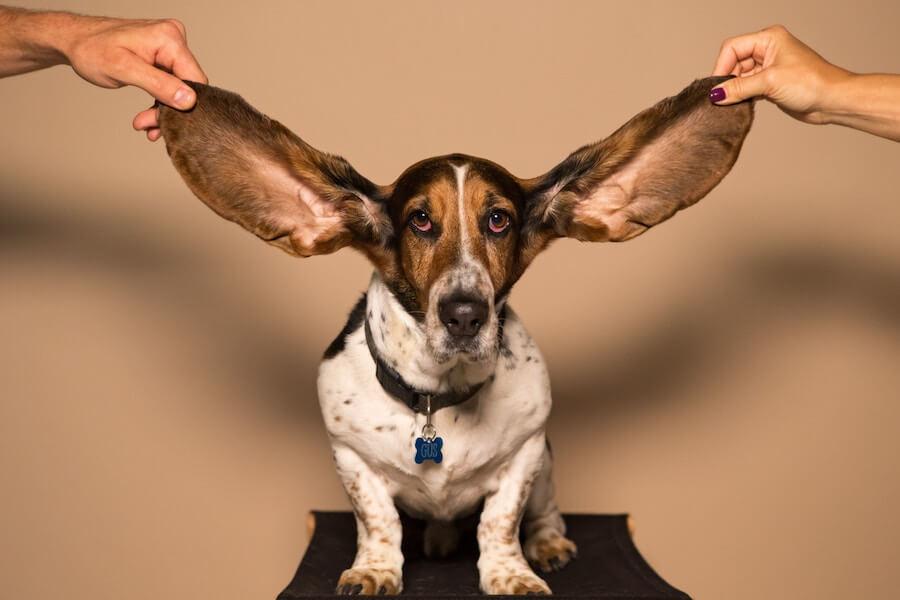 なぜ傾聴力を高める?